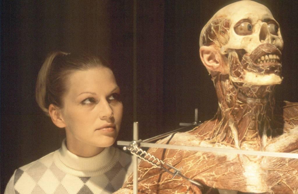 kinoweb: Anatomie